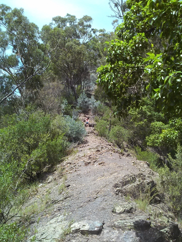 Bungonia White Track climb out